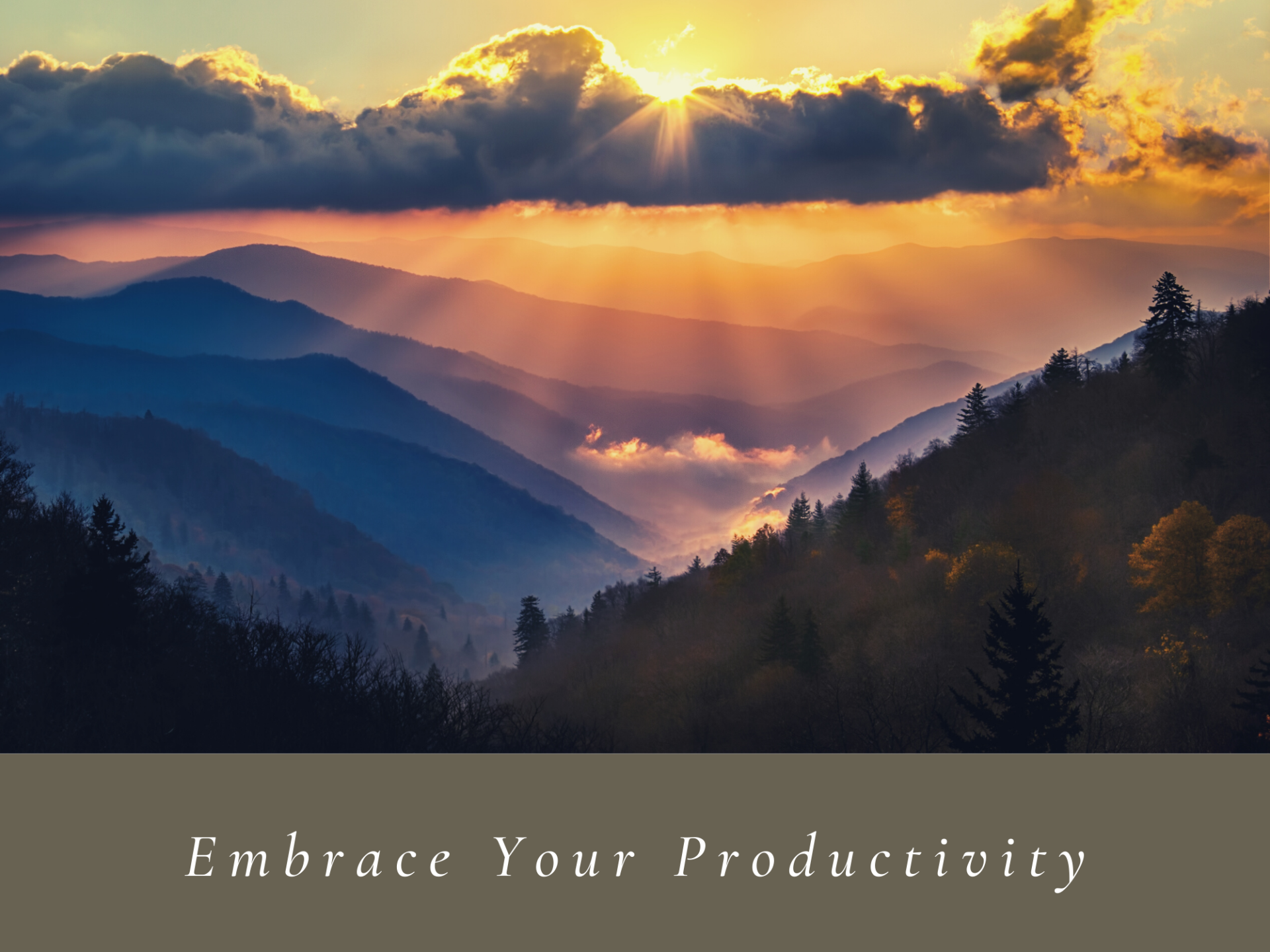 Embrace Your Productivity