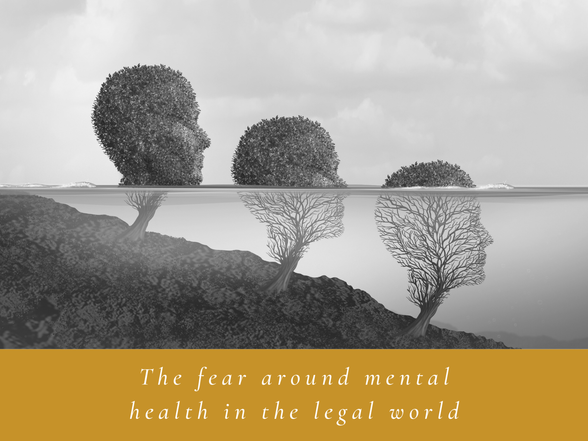 The fear around mental health in the legal world