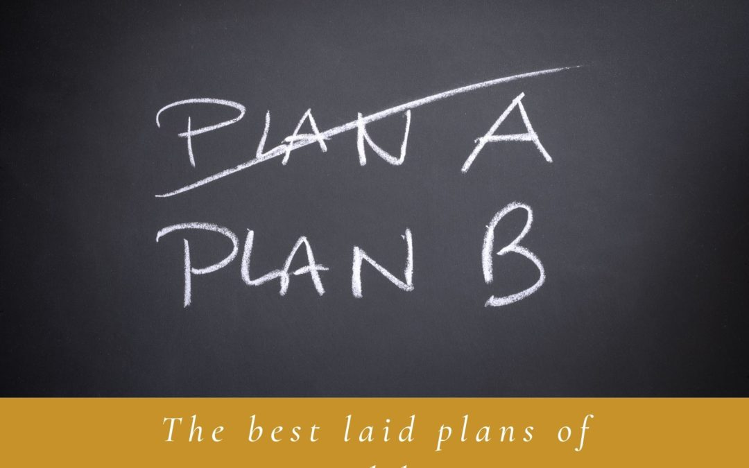 The best laid plans of mice and lawyers!
